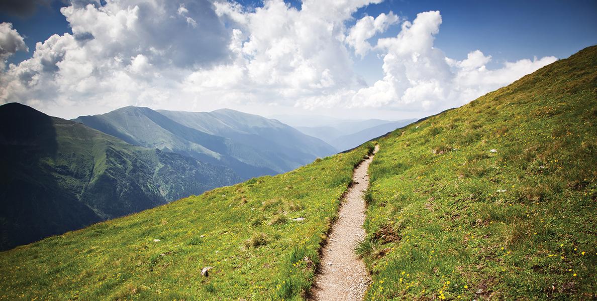 mountain pathLO